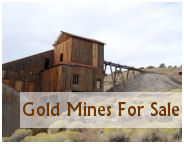 junior miners gold mines for sale